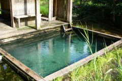 А в этом месте вода естественно выходит на поверхность, а не из скважины.