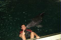 Детям тоже очень нравится общение с дельфинами