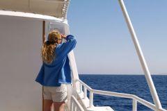 Наш инструктор по дельфинам с 6 утра уже изучает море