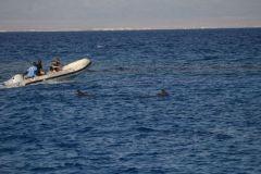 Один из способов, как попасть в дельфинам «в гости» :)  ..1