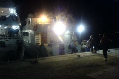 «ЧЕЛОВЕК И ДЕЛЬФИН», тренинг-круиз на Красном море, ноябрь 2009