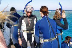 Дельфины появлялись или недалеко от шхуны, или нас подвозили к ним на лодке.